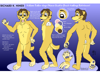 2011 Reference Sheet